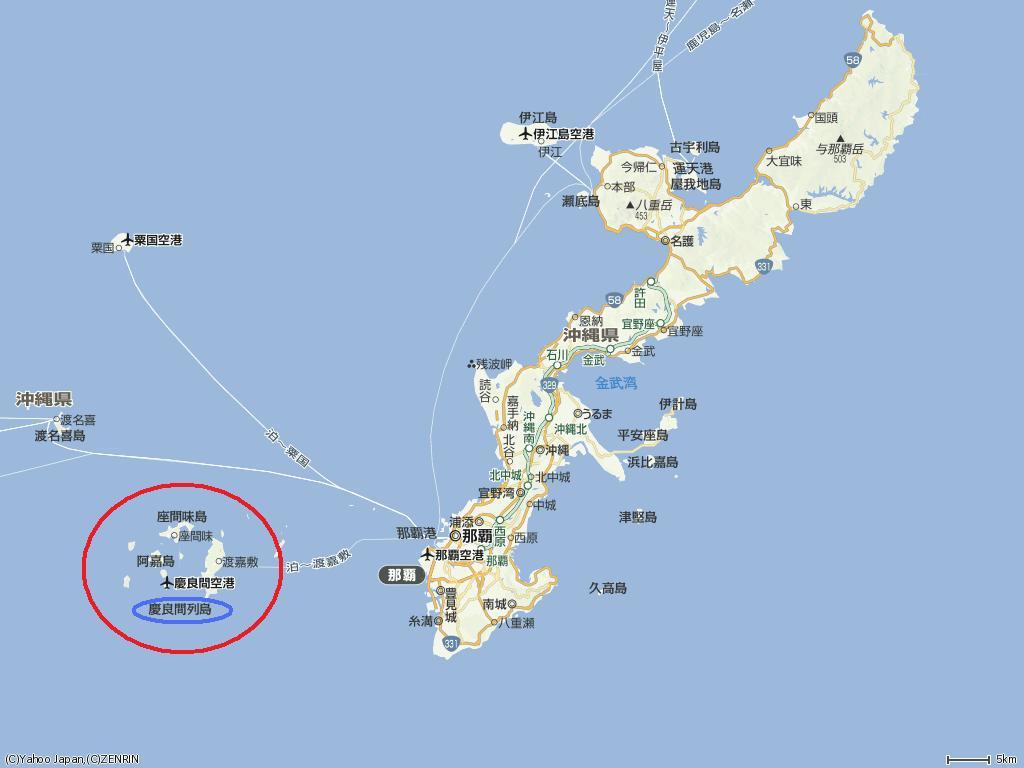 「慶良間諸島」の画像検索結果