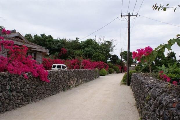 sightseeing at Taketomi island