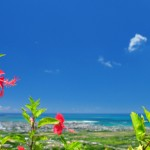 Ishigaki Island's Sightseeing Spots and Their Driving Routes