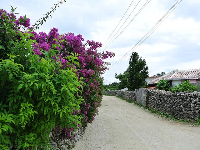 taketomi island walking course