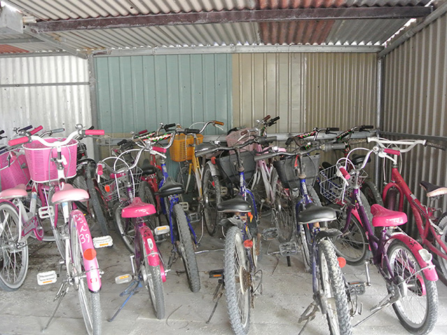 Taketomi Bicycle