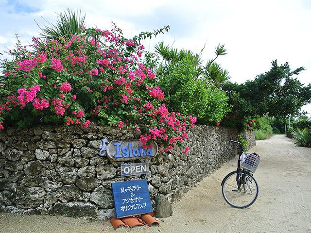 Taketomi Island Bicycle Tour
