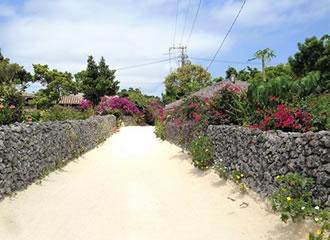 竹富島でレンタサイクルを借りよう♪