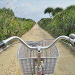 Travel Tips for Kudaka Island (Island of God) – Going through the Renal Cycling