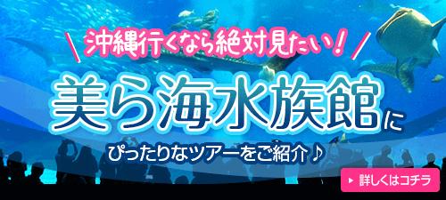 美ら海水族館特集