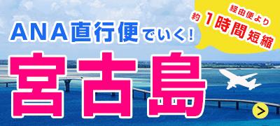 ANA直行便でいく宮古島