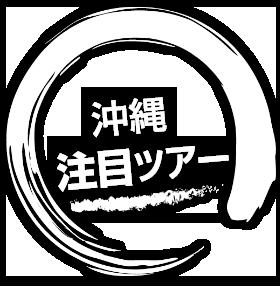 沖縄ツアーを楽しむ注目記事