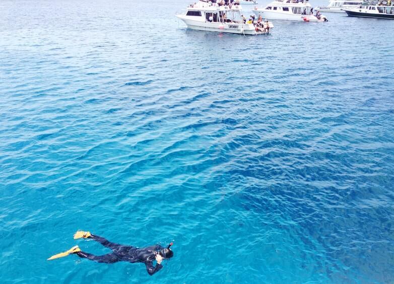 慶良間の海で潜る