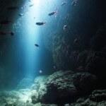 宮古島でのダイビングを失敗しない5つの秘訣|スポットまとめ