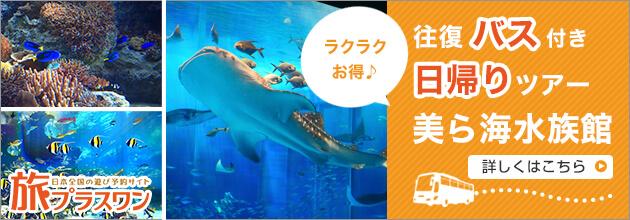旅プラスワンの美ら海水族館バスツアー