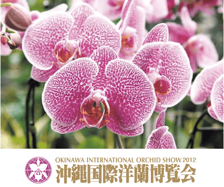 Okinawa International Orchid Show