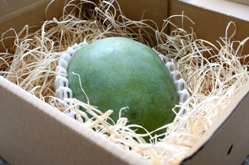 ki-tsu-mango-image