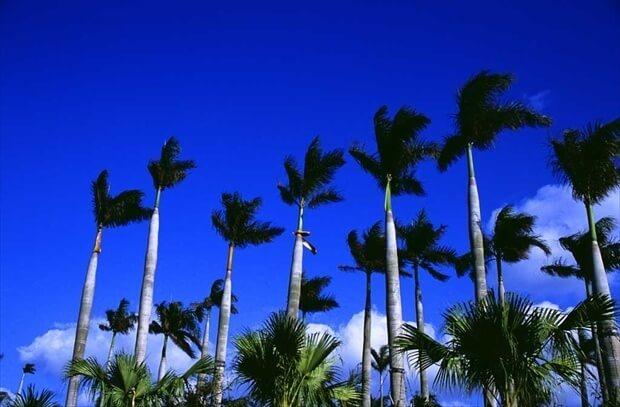 沖縄のイメージ