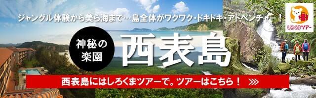ホワイト・ベアーファミリー 西表島旅行特集
