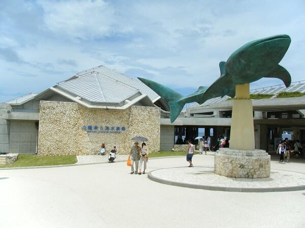 沖縄卒業旅行