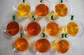 ペットボトルの「さんぴん茶」10種類を飲み比べてみた!