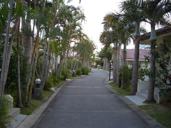 沖縄モデルコース