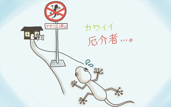移住妻 沖縄物件選び