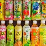 沖縄ご当地ペットボトルジュース12種飲み比べてみた!【フルーツ編】