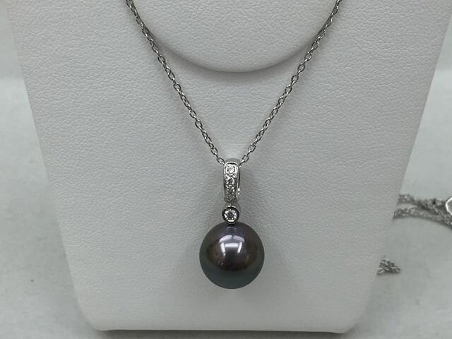 石垣島 黒真珠