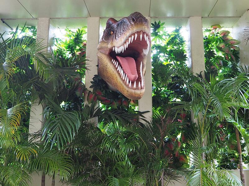 DINO恐竜PARK やんばる亜熱帯の森 写真スポット