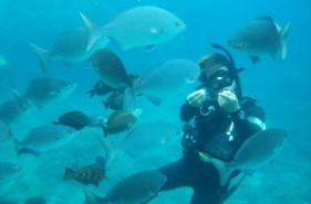 初めてさんも安心♪沖縄で体験ダイビング!【沖縄本島・石垣島・宮古島】