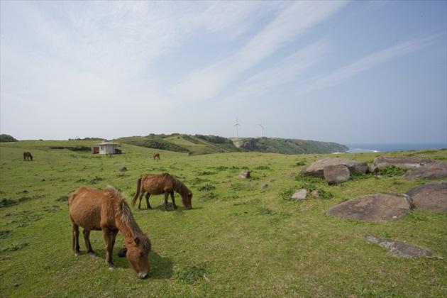 八重山諸島観光まとめ