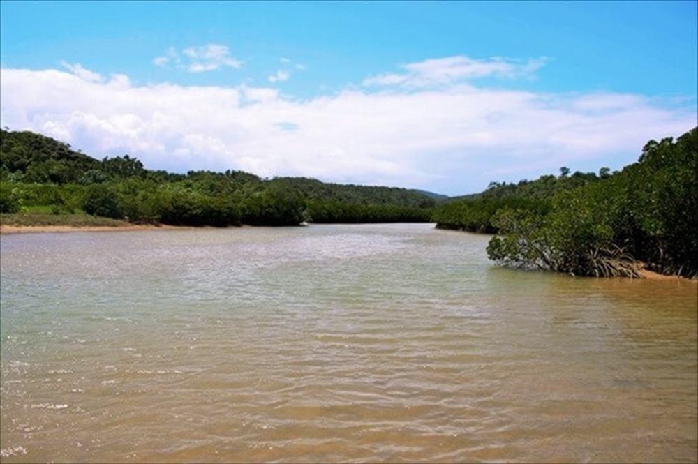 慶佐次マングローブ林|沖縄旅行おすすめイメージ