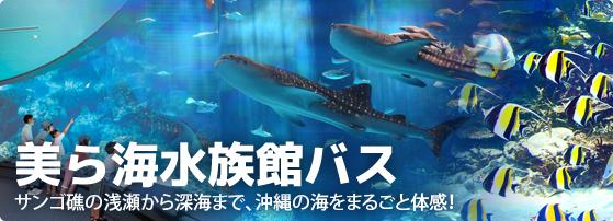 美ら海水族館観光バス特集バナー