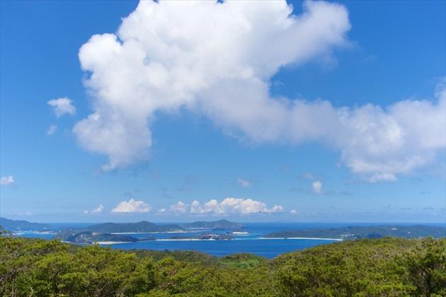 渡嘉敷島ダイビング