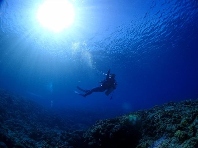 座間味島ダイビング