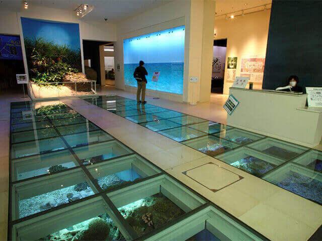 沖縄県立美術館