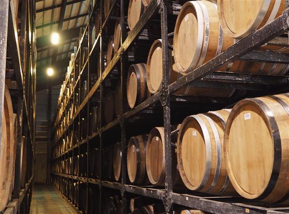 ヘリオス酒造工場見学