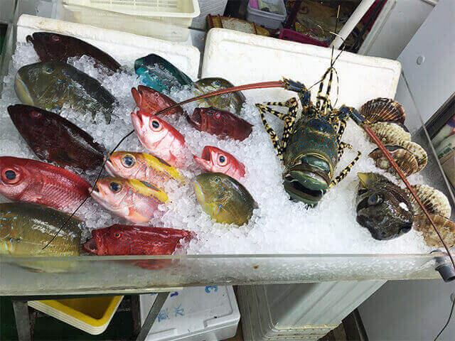 沖縄の島魚①