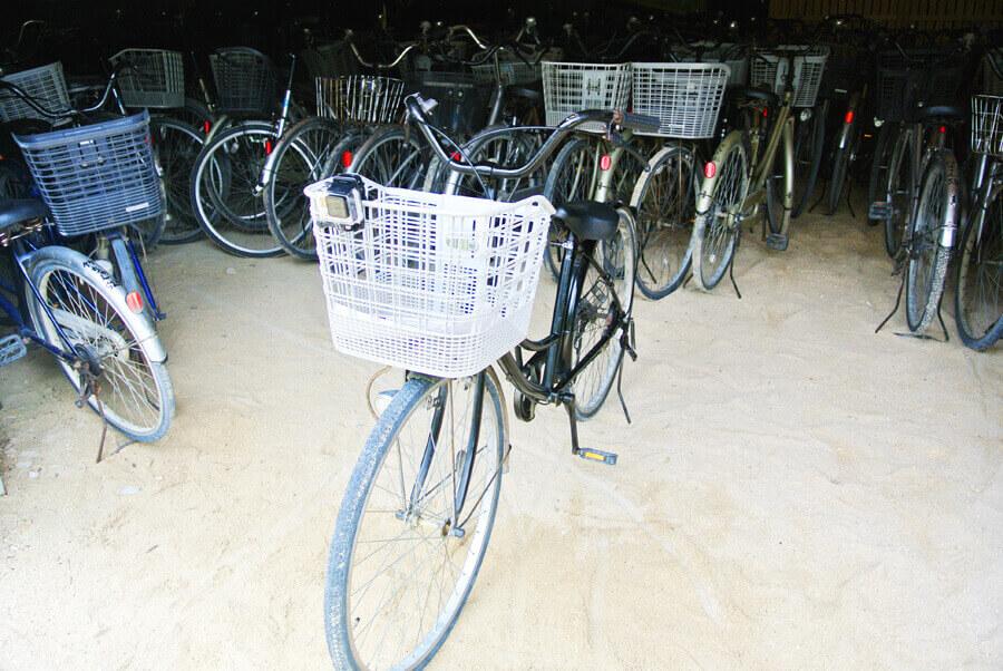 竹富島 自転車