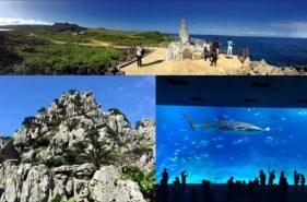 大石林山や美ら海水族館などを巡る沖縄北部バスツアーに参加してきた