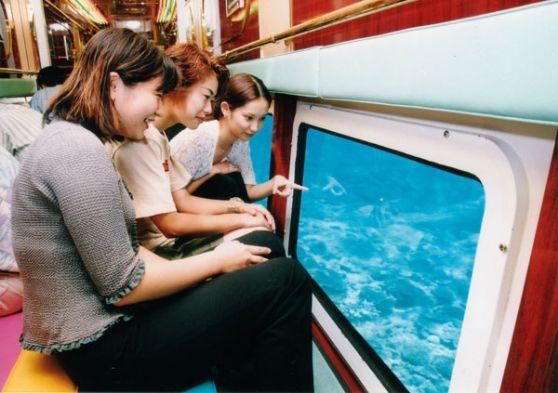 沖縄でグラスボートオルカ号