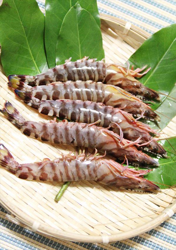 サイプレスリゾート久米島 エビ