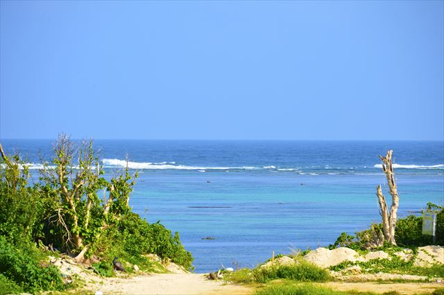 沖縄ハーリー