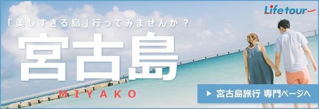 JALで行く宮古島