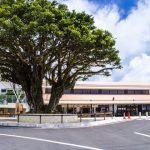沖縄本島南部のニュースポット「南の駅やえせ」に行ってきた!緑を眺めながらおいしいスイーツを!
