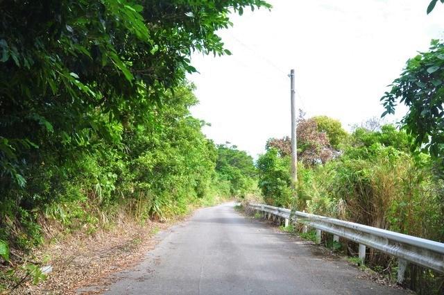 黒石の森への道のり