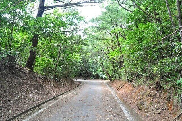 黒石の森からの帰り道