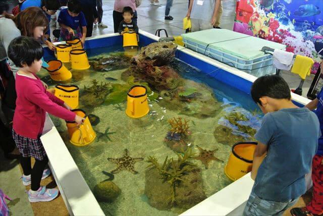 美ら島エアーフェスタミニ水族館