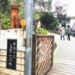 沖縄の伝統工芸やちむん|陶器市「壺屋陶器まつり」に行ってきた