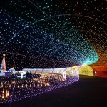 冬の沖縄で見ておきたいゴージャスなイルミネーション5選