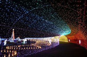 【2020年版】冬の沖縄で見ておきたいゴージャスなイルミネーション6選