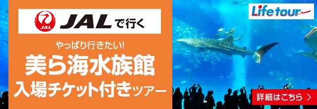 美ら海水族館入場チケット付きツアー