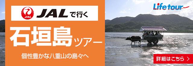 ライフツアーで石垣島