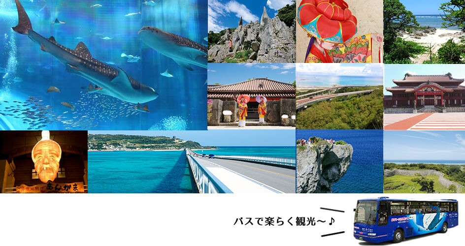 沖縄観光バスツアー特集